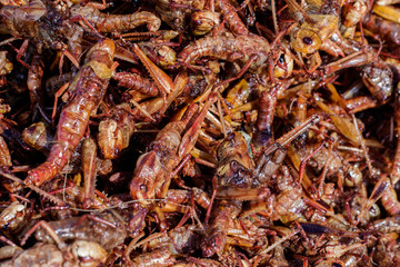Entomophagy from insect
