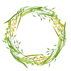 Wreath with herbs and cereal grass. Floral design of meadow plants