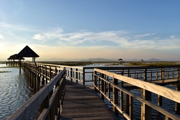 The three-way split on the wooden bridge, The path on the lagoon,Wetland,The  pavilion with  blue sky and horizon began to turn orange , Buang Bua ,Sam Roi Yot National Park ,Thailand