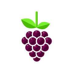 cartoon grapes vector