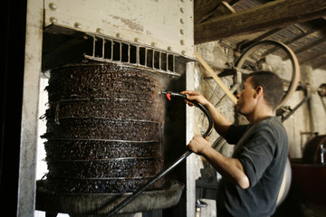 A worker uses hot water during a process to press olive paste to extract oil at a traditional oil works in the eastern village of Tazmelt, near Bejaia