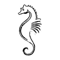 Fish marine animal icon vector illustration graphic design