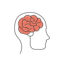 Human brain intelligence icon vector illustration graphic design