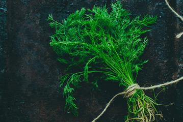 A bunch of fresh dill on dark background. Empty space for text.