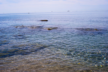 Corales claros