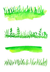 Watercolor vector collection of grass. Several types of grass for design