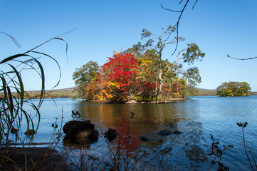 Idyllic view of Autumn Leaves in Onuma Lake, Onuma Quasi National Park, Hokkaido, Japan