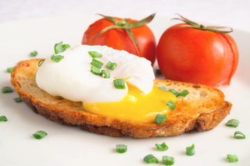poached egg, toast, and baked tomatoes sprinkled with green onion