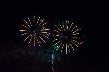 Bright and colorful Firework in front of a dark night sky