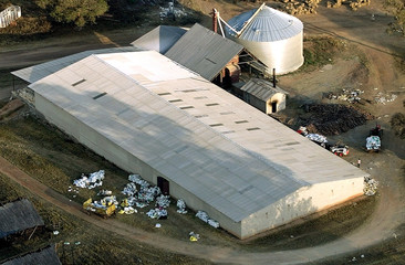 A commercial farming barn in this aerial picture shows the damage after it had been looted by illega..