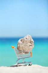 Piece of a coral in a shopping cart miniature on a beach, endangered species smuggling and environment degradation concept.