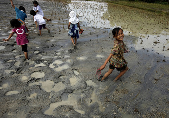 Children play at a paddy field which is covered in mud in Serang