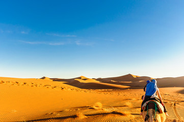View of dunes in the dessert of Morocco by M'hamid