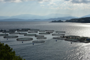 Silhouette of fish farm in the calm waters of Ionian Sea near Kassiopi, Corfu Island, Greece. Albanian coast seen on the horizon