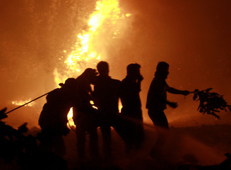 Volunteers try to extinguish a bush fire in the village of Kato Souli, northwest of Athens