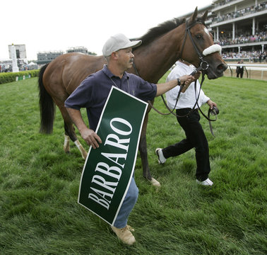 Barbaro is lead out of winner's circle after winning Kentucky Derby at Churchill Downs