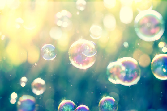 The Abstract background from soap bubble in the air with nature defocused