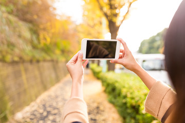 Woman taking photo with cellphone with the beautiful ginkgo tree in autumn