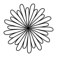 beautiful flower icon over white background. vector illustration