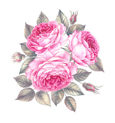 Bouquet of rose, watercolor, can be used as greeting card, invitation card for wedding, birthday and other holiday and summer background