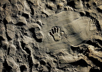 Jewish children make hand prints on the sand at a beach at the Jewish settlement of Shirat Hayam in ..