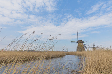 Windmill At Kinderdijk Netherlands