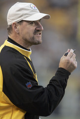 Pittsburgh Steelers head coach Cowher takes exception to call by official during second quarter of their NFL football game against Denver Broncos in Pittsburgh