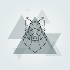 Geometric vector animal grey wolf head background.