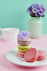 French colorful macarons, white background