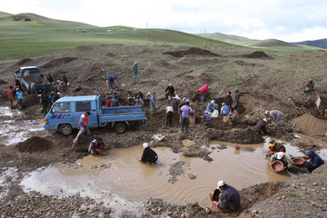 -PHOTO TAKEN 08JUL06- Mongolian illegal miners, also called Ninjas, search for gold at Uyanga Sum so..
