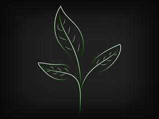 green sedling leaves vector illustration