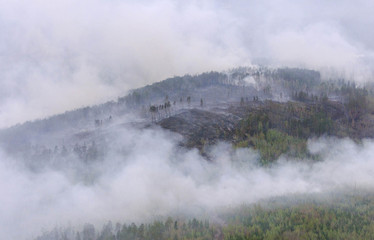 AN AREA OF SIBERIAN FOREST BURNS IN THE BOGUCHANSKY DISTRICT.