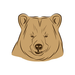 head bear animal free spirit symbol vector illustration