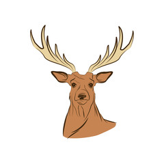 free spirit deer animal bohemic design vector illustration