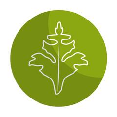 sticker fresh vegetables plants healthy food