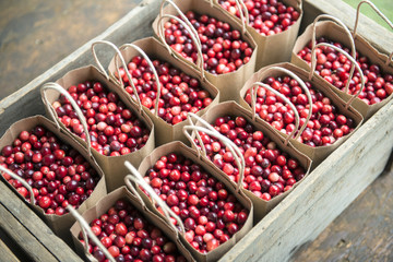 USA, Massachusetts, Wareham, cranberries (Large format sizes available)