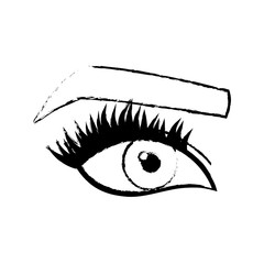 woman eye and eyebrow icon over white background. vector illustration