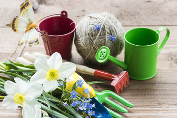 gardening concept/spring flowers and garden tools on wooden background