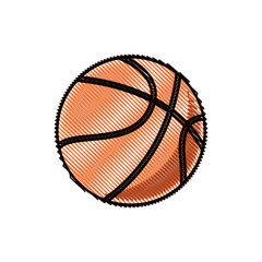 drawing basketball ball sport competition element vector illustration