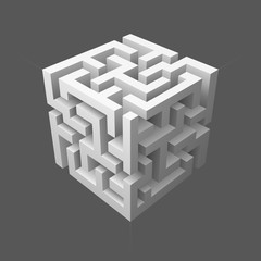 The maze cube