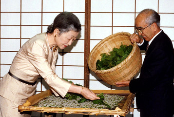 Japanese Empress Michiko (L) drops mulberry leaves over a basket of silk worms at the Imperial Palac..