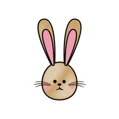 drawing cute head rabbit easter symbol vector illustration
