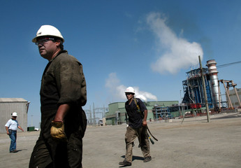 WORKERS OF EDENOR THERMOELECTRIC WALK IN THE PLANT.