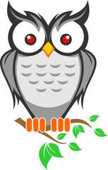 logo owl bird cartoon