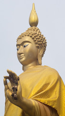 Standing buddha with withered flower on the left hand