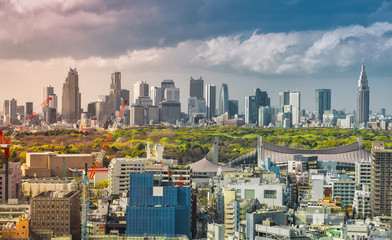 Tokyo skyline with Shinjuku skyscrapers and Yoyogi Park, Japan. Light leak effect