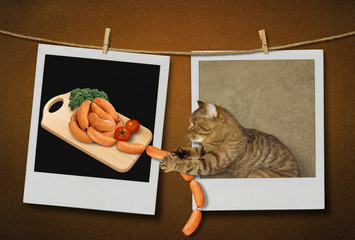 The cat is stealing delicious sausages.