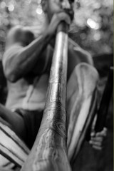 Yirrganydji Aboriginal man play Aboriginal music on didgeridoo