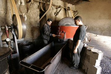 Workers remove olive paste from a crusher at a traditional oil works in the eastern village of Tazmelt