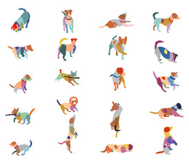 Set of vector colorful terrier dogs